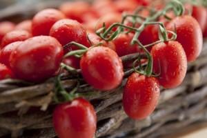 grape tomato august 2014